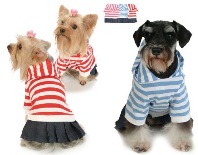 Учимся шить одежду для собак